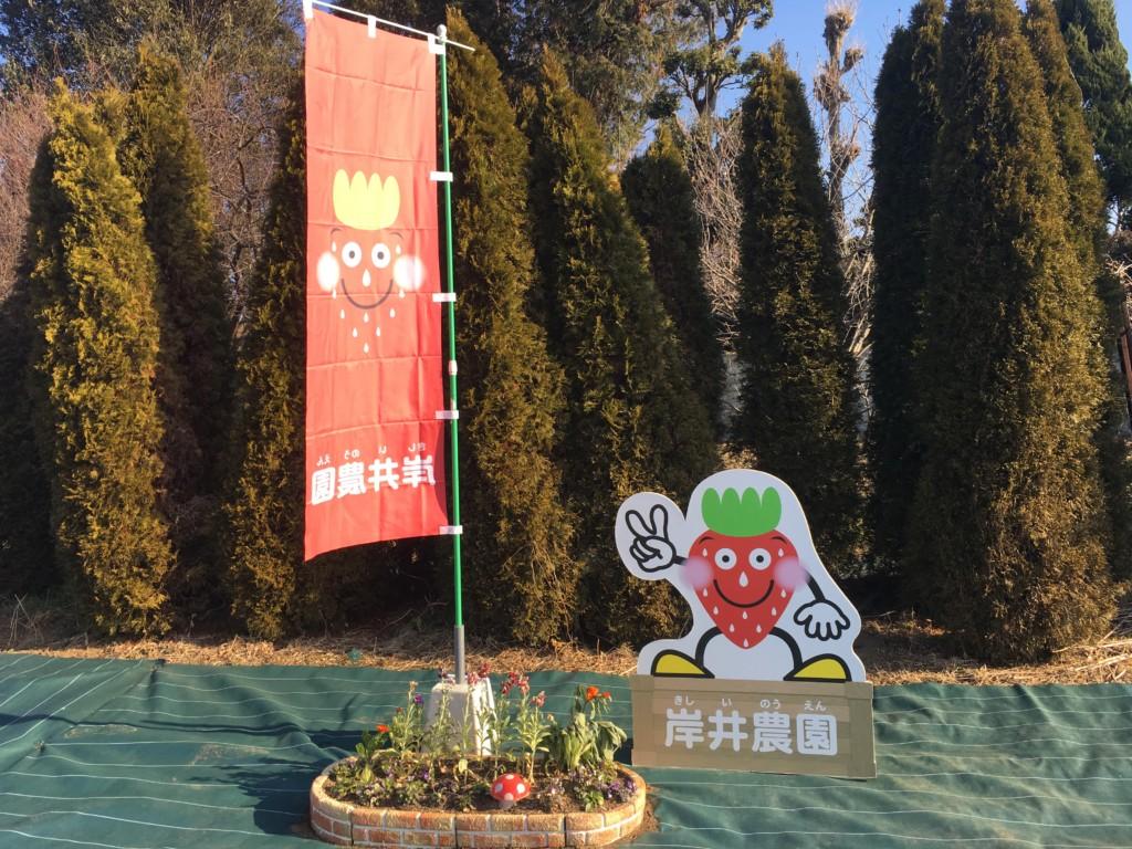 【関東】埼玉県上尾市で2歳児といちご狩りした口コミ♪岸井農園は美味しいいちごが食べ放題!