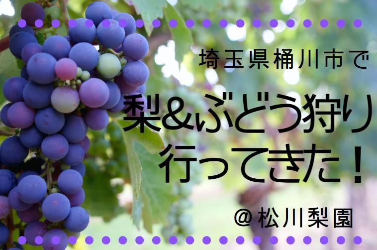 【関東】予約不要!埼玉県桶川市で、子連れで梨&ぶどう狩りをしてきた口コミ。美味しすぎて息子大喜び♪