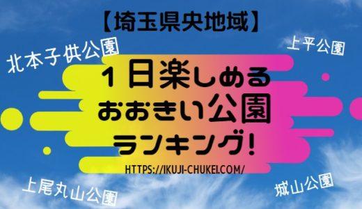 無料!実際に子供が喜んだ、埼玉県央地域(上尾市など)の「大きい公園」おすすめランキングTOP5