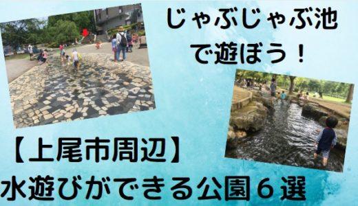 無料!子供が喜ぶ!「水遊びができる」埼玉県上尾市周辺のじゃぶじゃぶ池がある公園おすすめ6選。いつからいつまで?も公開。