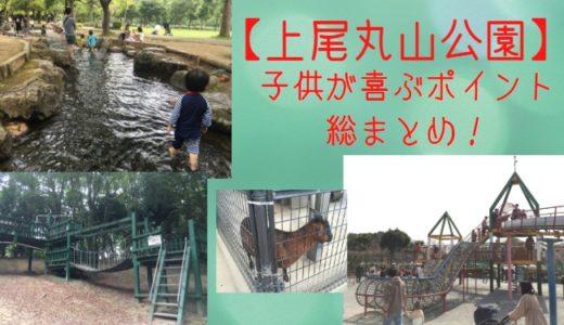 上尾丸山公園で子供が喜ぶポイント総まとめ|遊具・ロング滑り台・水遊び・体験型教室(未就学児OK)など盛りだくさん!