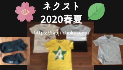 ネクスト2020春夏【3歳男の子】買い物失敗。ネクストでロンT・ポロシャツ・靴下を購入して実寸も計測!